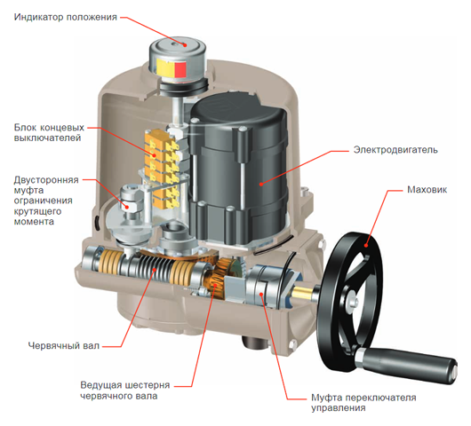 Конструкция электропривода серии ГЗ-ОФ(К), ГЗ-ОФ(М) в разрезе